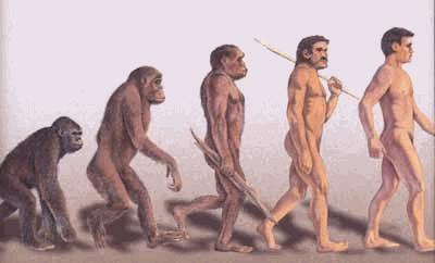humus-sapiens